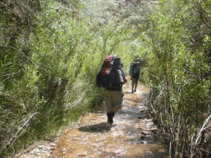 wilderness therapy for adhd  - Aspiro Adventure Therapy