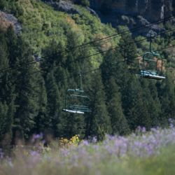 Cable cars in the wilderness